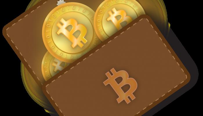 As carteiras digitais para criptomoedas armazenam as informações das transações feitas com as moedas digitais no blockhain.