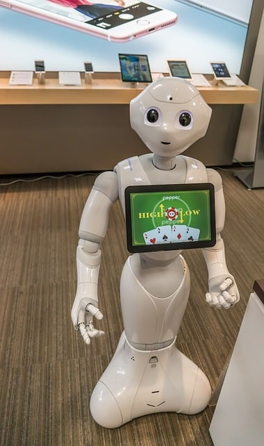 No Japão a robótica está presente nas casas e nas fábricas
