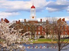 Saiba como estudar em Harvard