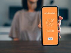 Steam Wallet: mãos femininas usando carteira digital no celular
