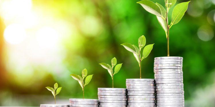 pilhas de moedas representando lucro em Private Equity e Venture Capital